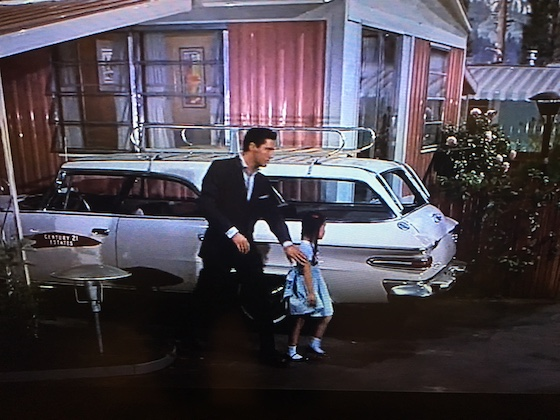 elvis with pink mobile home